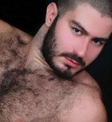 Arab gay bear