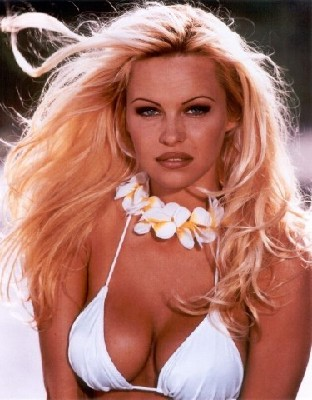 pamela anderson pic. Pamela Anderson also known as