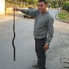 man with dead snake