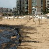 Photo Oil Spill Ramleh El Bayda Beach